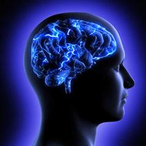 photodune-3141859-brain-activity-xs-crop-u4482